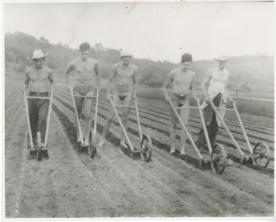 Students plowing a field