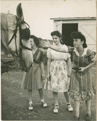 Students With Horse