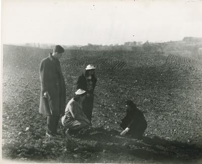 Students examining the soil