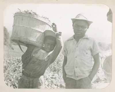 Children Picking and Packing
