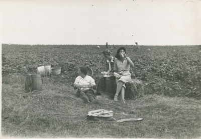 Eating Lunch in the Field