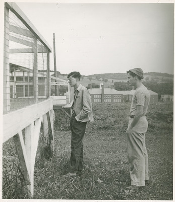 Students Examining Cages