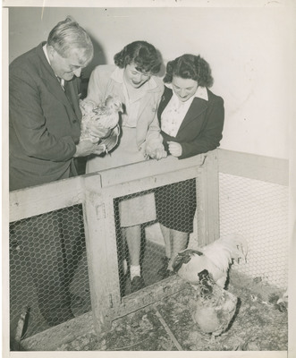 Prof. Benedict, Students and Chickens