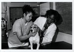 Veterinary Technology Students working with a dog